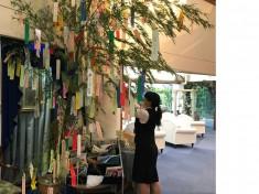千枚七夕は真誠会セントラルクリニックのロビーに飾っています。
